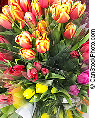 Bouquets of beautiful multi-colored tulips for holidays, sale.