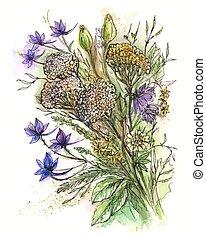 bouquetten, bloemen, vector, illustratie