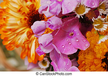 bouquetten, c, bloemen, kleurrijke