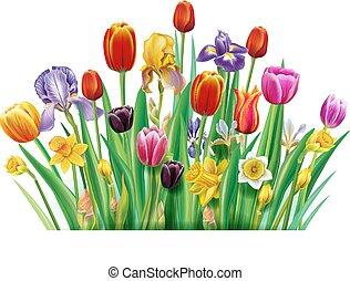bouquetten, lente, veelkleurig, bloemen