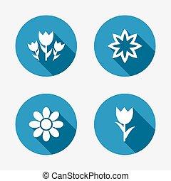 bouquetten, rozen, bloemen, symbool., icons.