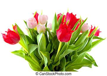bouquetten, tulpen