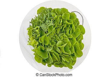 bouquetten, van, gezonde , groen lettuce