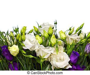 bouquetten, van, lisianthus, bloemen, op wit