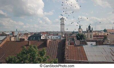 bourdon, lviv, métrage, européen, aérien, populaire, ville, ...