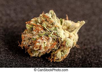 bourgeons, marijuana