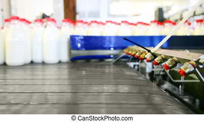 bouteilles, convoyeur, usine, aller, laitage, ceinture, arrosé, lait