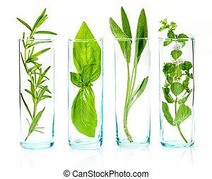 bouteilles, haut, herbes, frais, huiles, fin, essentiel