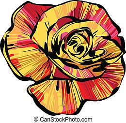 bouton rose, multi-coloré