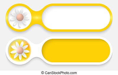 boutons, texte, fleur, deux, entrer