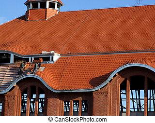 bouwsector, dak, werken