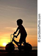 bov on bike