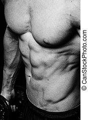 boven., gespierd, man, torso, jonge, witte , afsluiten, sportief, achtergrond, black , vrijstaand, abs, perfect, sexy