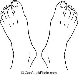 bovenzijde, mannen, lijnen, illustratie, voetjes, vector, black , witte , omtrek, aanzicht