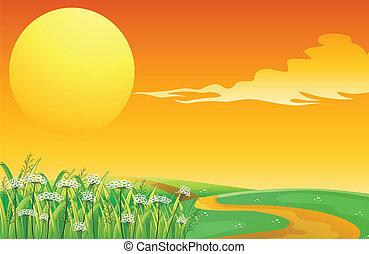 bovenzijde, ondergaande zon , weg, heuvel