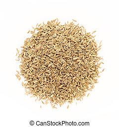 bovenzijde, organisch, venkel, seed., aanzicht