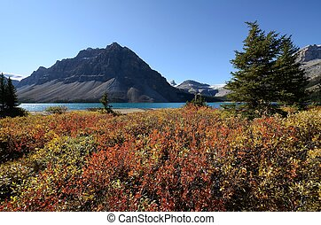 Bow Lake in autumn,Canadian Rockies,Canada