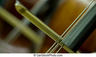bow on strings in orchestra - macro of a bow on cello...