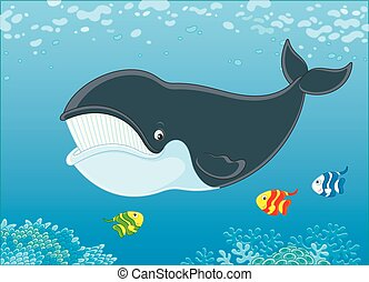 Bowhead whale and funny small fishes