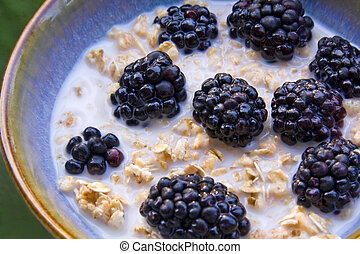 Bowl of granola cereal with fresh blackberries.