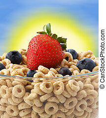 Bowl of cereal with blueberry