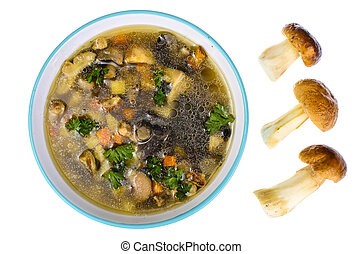 Bowl of mushroom soup on white background