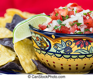 Bowl of spicy salsa and corn chips - A fancy bowl with nacho...
