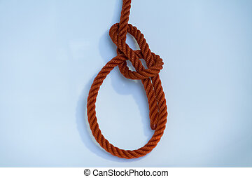 Bowline knotted on a white background.
