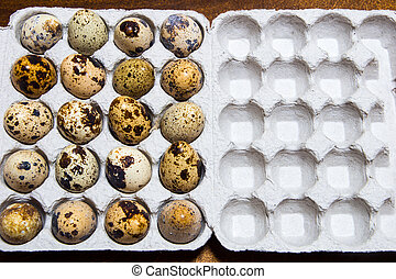 box., 卵, text., 場所, ウズラ, あなたの