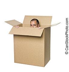 box., tektura, człowiek