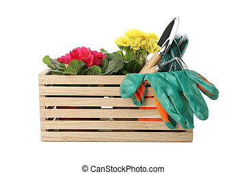 Box with gardening tools and flowers isolated on white background