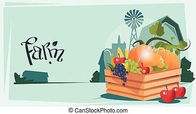 Box With Vegetable Harvest Eco Farmland Background