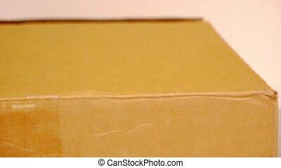 box., wnętrze, ręka, portret, tektura, otwarty
