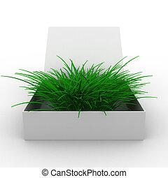 boxas, avbild, isolerat, grass., öppna, 3