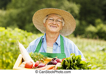 boxas, kvinna, trä, grönsaken, holdingen, senior