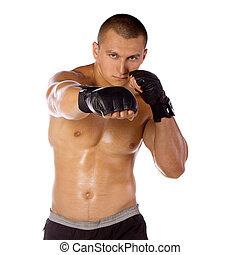 boxeador, sports., macho, fighter.