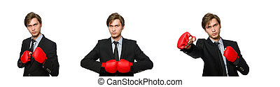 Boxer businessman isolated on white