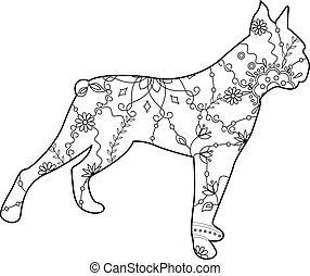 boxer, färbung, hund