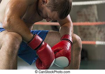 Boxer in the corner