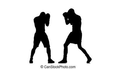 Boxer knocked down. Silhouette