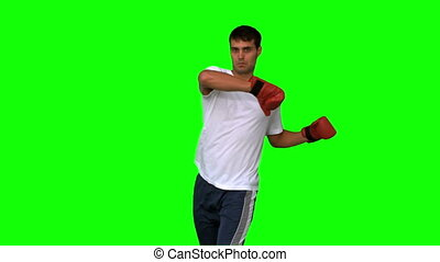 Boxer performing a high kick on green screen in slow motion