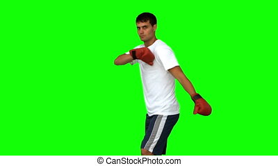Boxer performing an air kick on green screen in slow motion