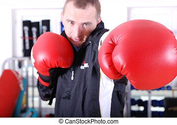 .boxer