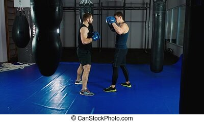 Boxer training with a partner