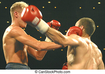 exchanging blows - boxers exchanging blows