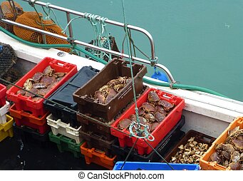 Boxes full of crabs on a boat