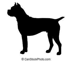 boxeur, silhouette, chien noir, allemand