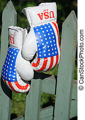 Boxing Gloves on the Fence