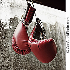 Boxing gloves - Photograph of a pair of hanging boxing...