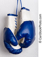 Boxing gloves - White and blue boxing gloves